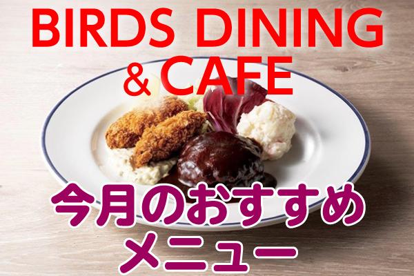 BIRDS DINING&CAFE 今月のおすすめメニュー